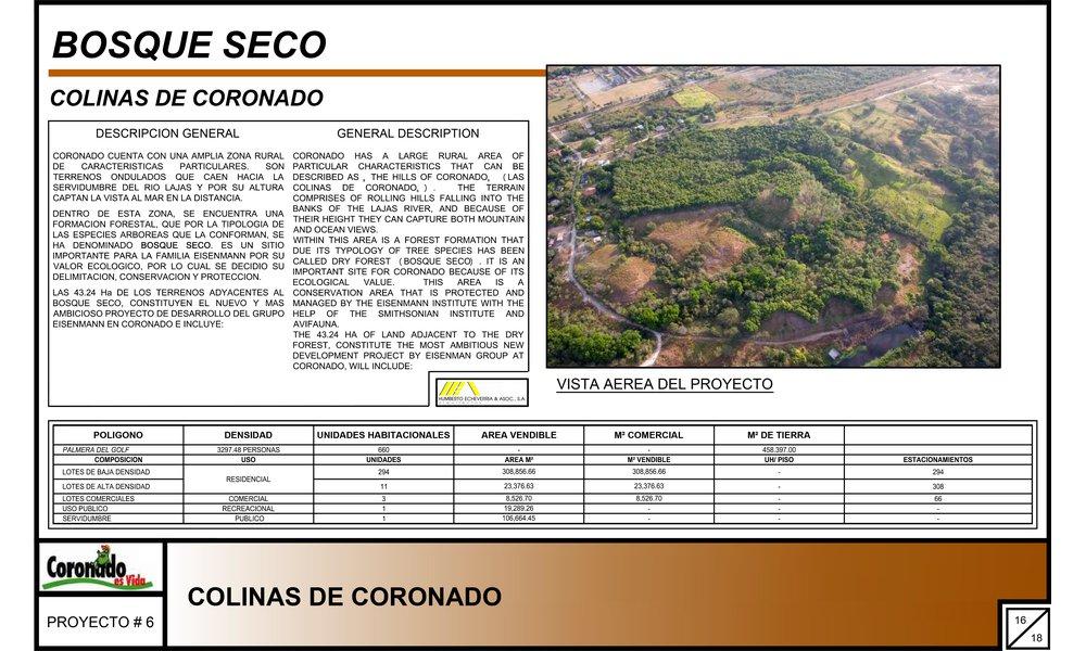 Bosque Seco Coronado 2 thumbnail